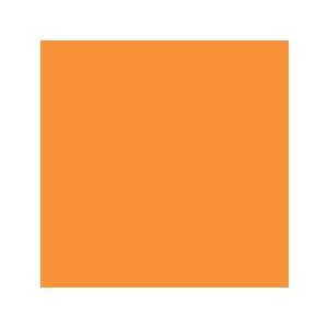 EMS Leads